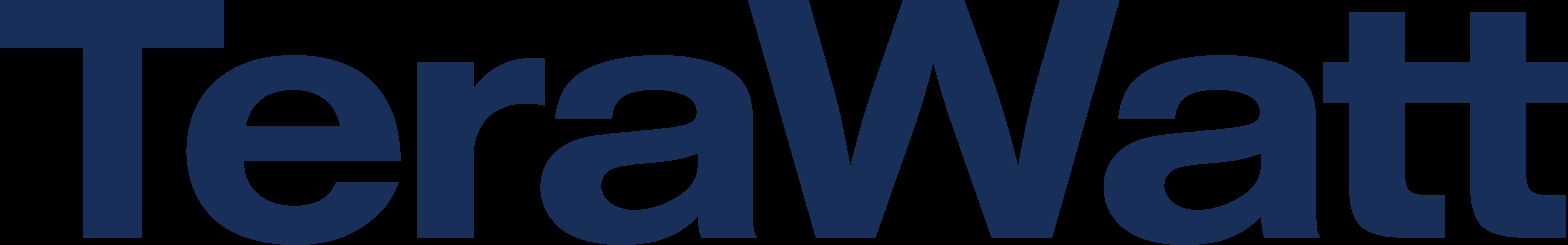 TeraWatt Infrastructure logo