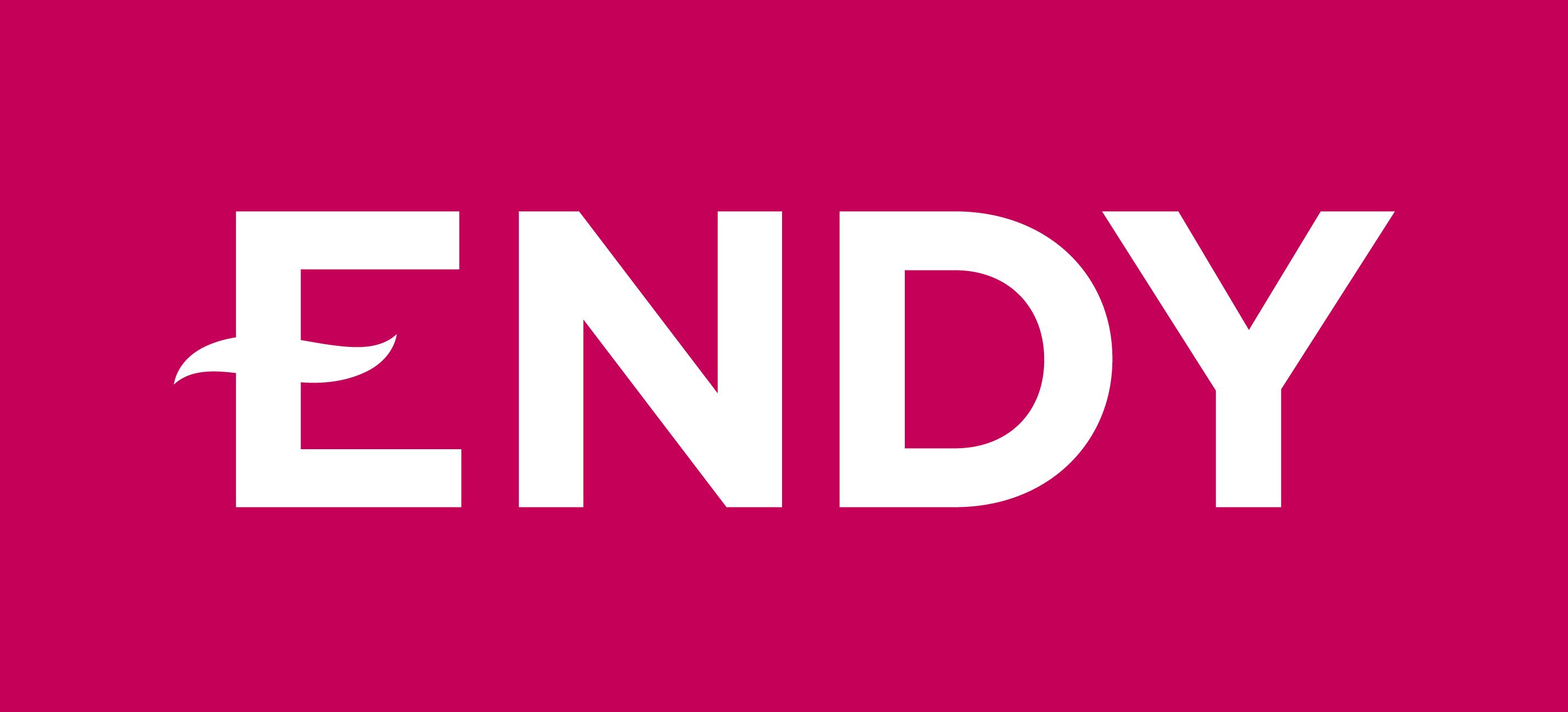Endy Canada Inc. logo