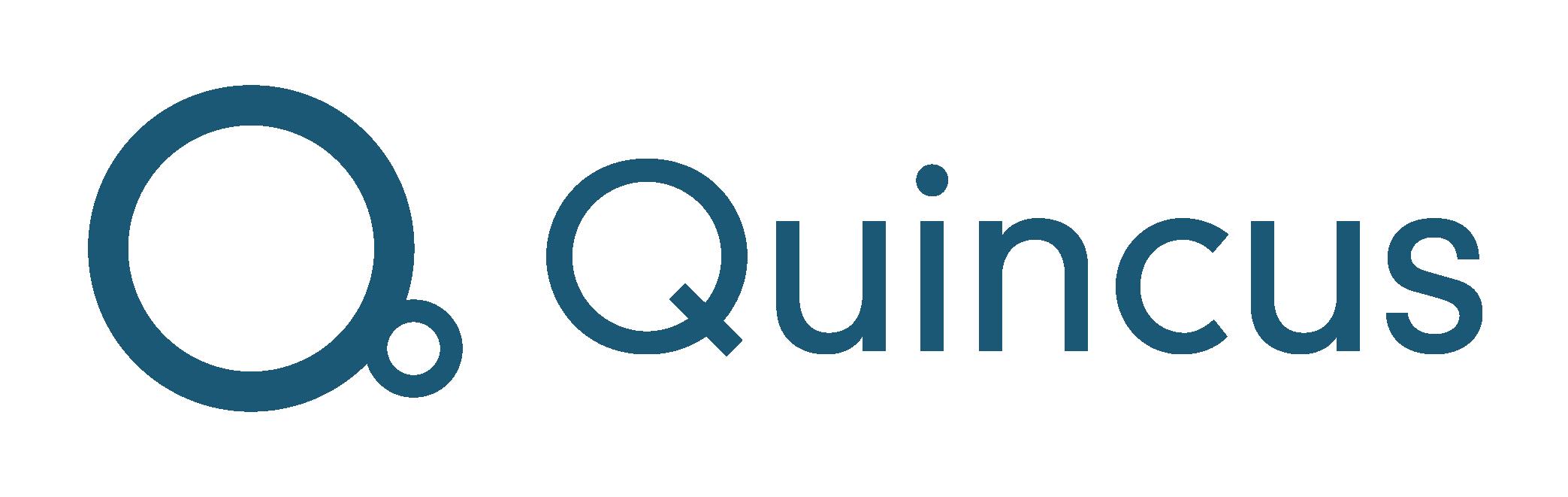 Quincus logo